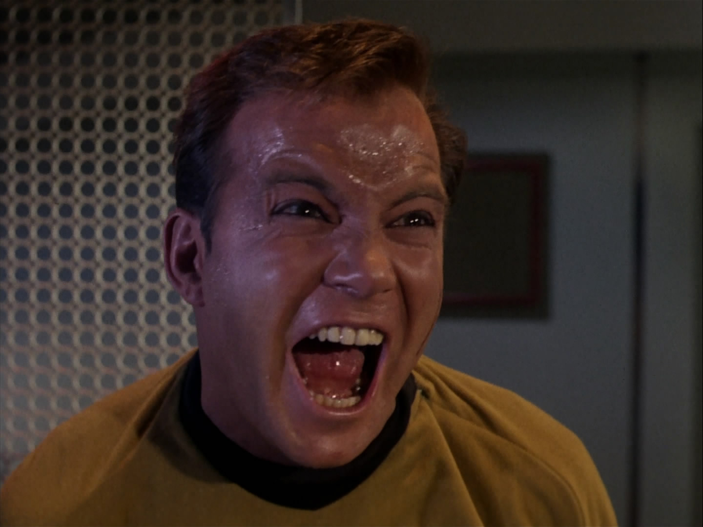 William Shatner Star Trek Memes